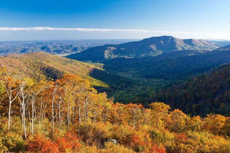 Autumn landscape in Shenandoah National park