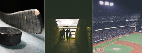 hockey -stadium - baseball -triple carousel image